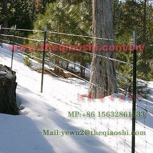 绿化用网围栏